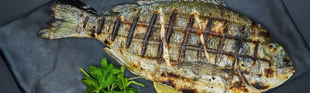 Buy Fish Online | Seafood, Fresh and Frozen | Salmon, Cod, Bream, Plaice, Turbot - fresh-fish